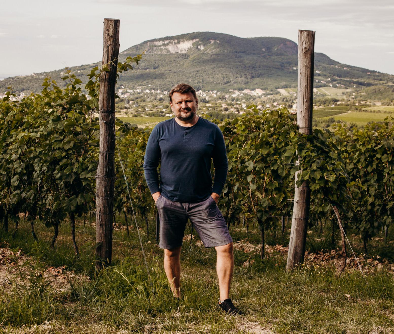 We Love Balaton: A változatosság vidéke – 5 borász 5 kedvenc dűlője az északi parton